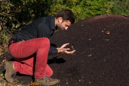 compost julian